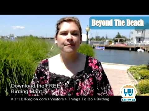 Beyond The Beach: August 2011 pt1