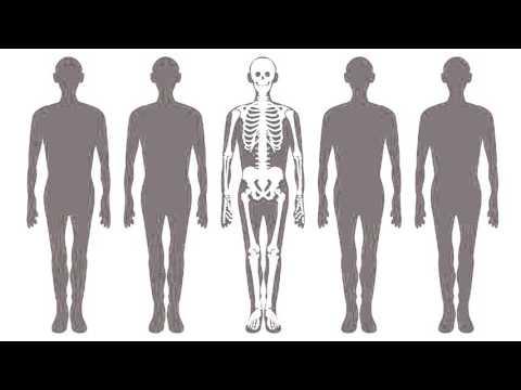 Wat is de oorzaak van leukemie beenmergkanker?