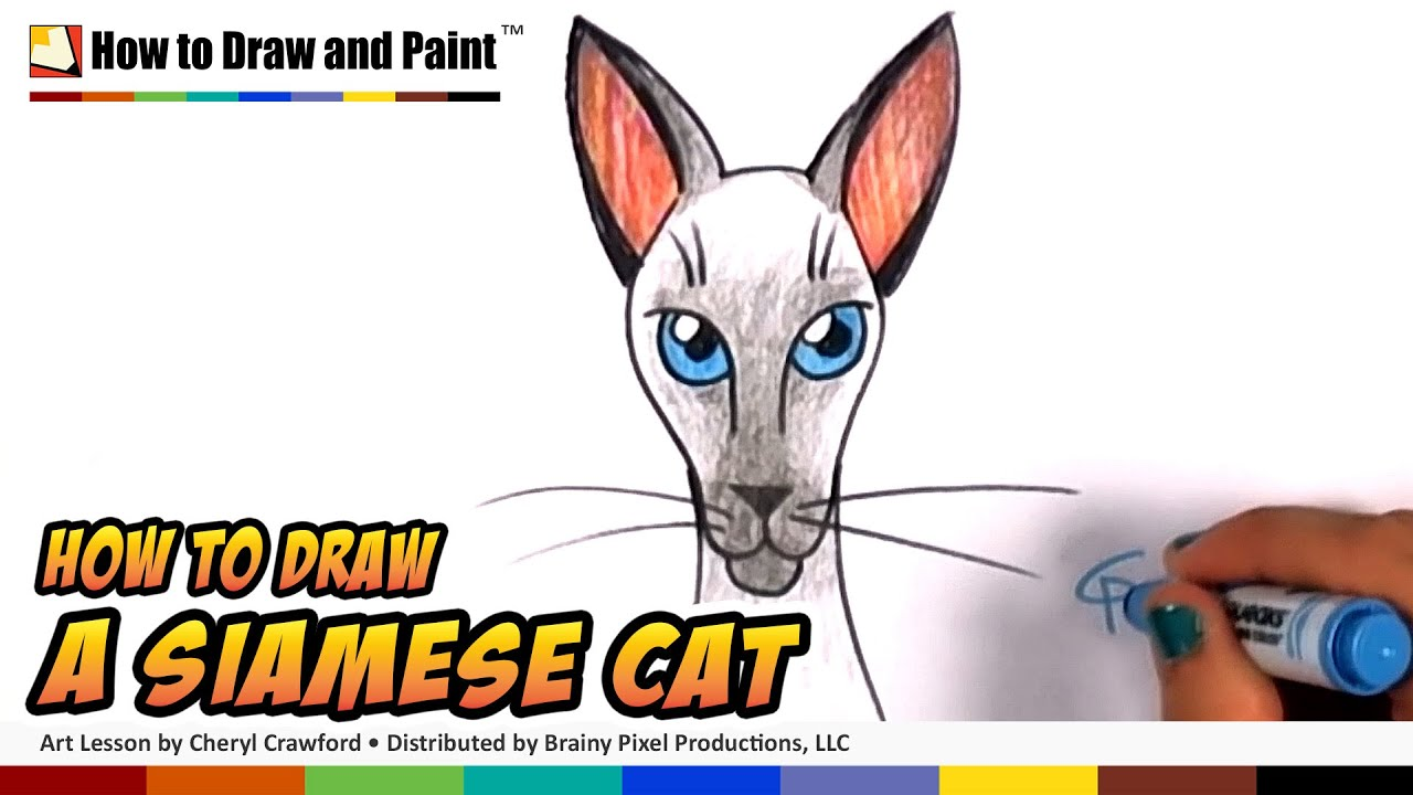 How To Draw A Cat Siamese Cat Drawing Lesson Art For Kids Cc How To Draw Rabbit  Face