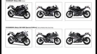 11. 2013 Ninja 300 Specifications