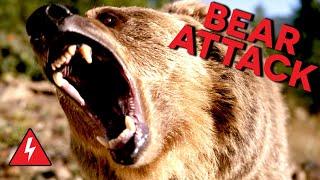 Video Rampaging Bear Attacks Family! Do They Survive? MP3, 3GP, MP4, WEBM, AVI, FLV Juli 2019