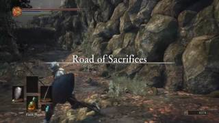 Finishing up the Undead Settlement and making our way to Road to Sacrifices