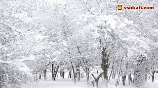 Зимовий ранок | Сокаль
