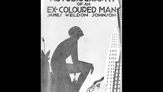 The Autobiography of an Ex-Colored Man (FULL Audiobook)