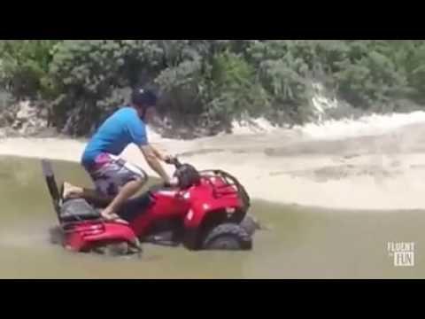 Turistas arrollan a un cocodrilo en un área protegida en Cozumel