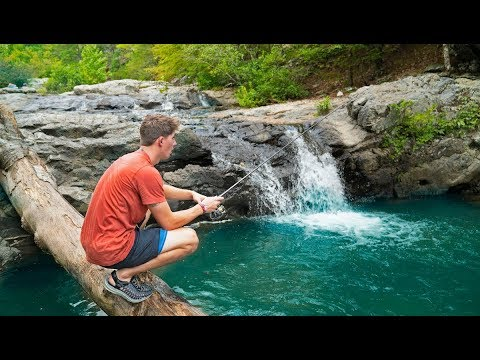 Exploring & Fishing EPIC Waterfalls HIDDEN in The Mountains - Thời lượng: 15 phút.