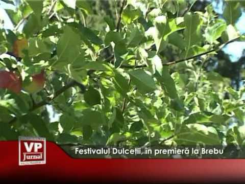 Festivalul Dulceţii, în premieră la Brebu