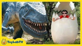 Giant Life Size Dinosaurs at Family Trip to Dinosaur World Park
