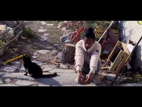 Télécharger Paroles de bandits Film Complet en Français BDRip FullHD