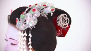 Maiko hair accessories