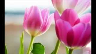 بهار میآید - دکلمه فرهاد هاشمی Spring - Farhad Hashemi