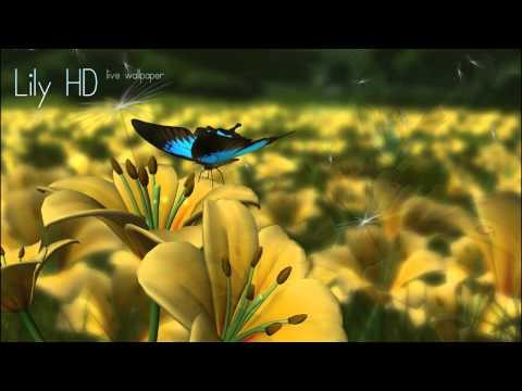 Video of Lily HD 3D Live Wallpaper