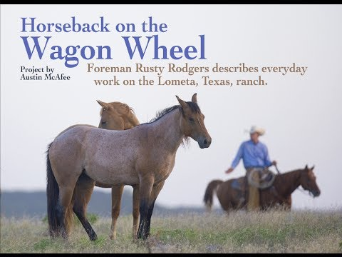 Horseback on the Wagon Wheel