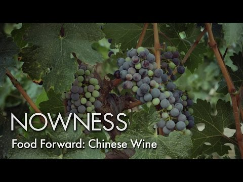 Food Forward: Chinese Wine