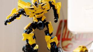 Bumblebee Boy
