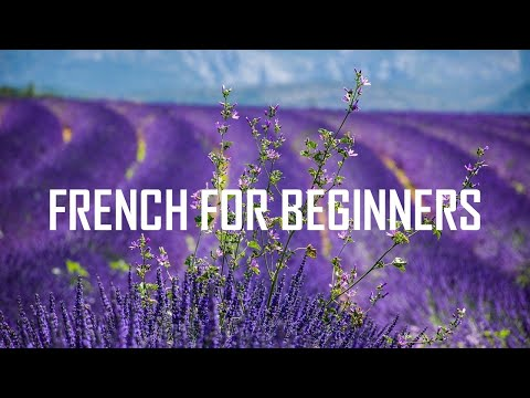 French - [French for beginners] Units 1-2-3-4-5-6 (8 hours 53 minutes)