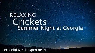 Download Lagu Sleep and Relaxation Nature Sounds, Crickets Summer Night - Sleep Music Mp3