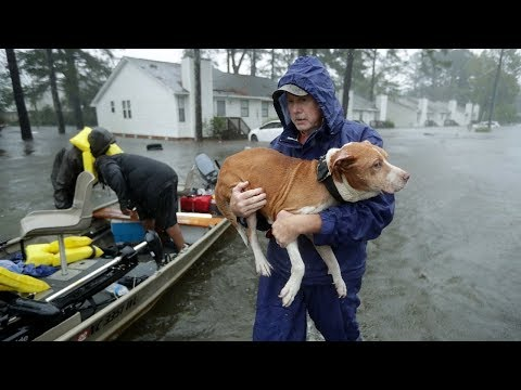 Ураган «Флоренс» затапливает США, тайфун «Мангхут» свирепствует в Азии онлайн видео
