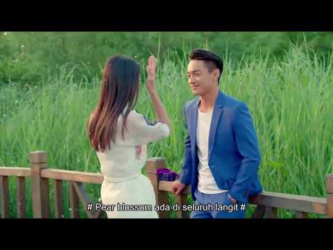 The Hidden Love  隐爱 【Sub Indonesia】