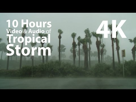 4K UHD 10 hours - Tropical Storm window for ambience - relaxation, meditation, nature