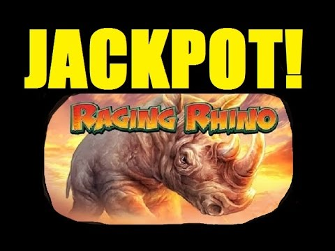 ★☆ JACKPOT!! RAGING RHINO SLOT MACHINE BONUS CAUGHT LIVE!! Slot Machine Bonus Huge Win! (DProxima)