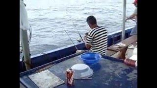 Pesca Dourado Equipe Nadir