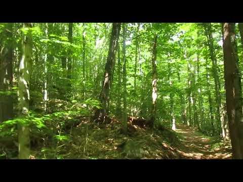 Hiking Edick Road Extension Trail (видео)
