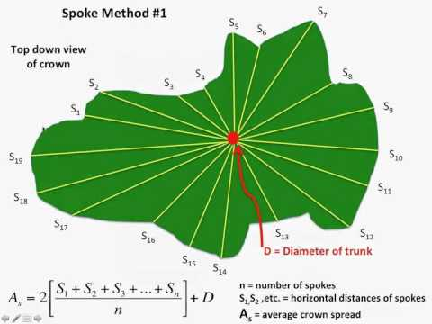American Forests Big Tree Measuring Workshop Part 1: Crown Spread