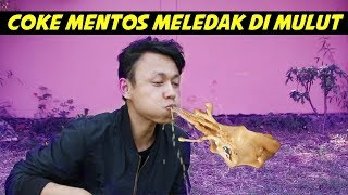 Video COKE MENTOS EXPERIMENT MP3, 3GP, MP4, WEBM, AVI, FLV September 2019