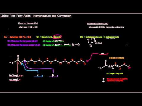 Lipids (Part 3 of 11) - Free Fatty Acids - Nomenclature and Convention