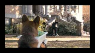 Nonton Cool Dog Highlights Film Subtitle Indonesia Streaming Movie Download