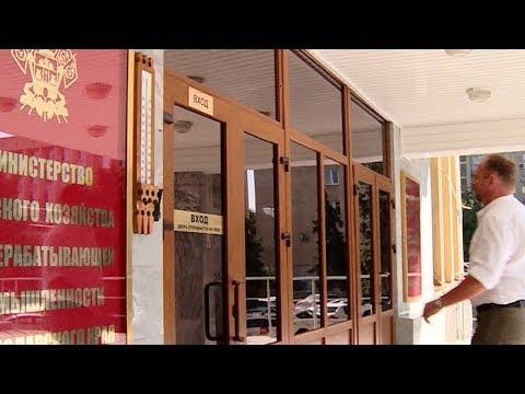 Документы на субсидии могут подать фермеры Кубани до 25 июля