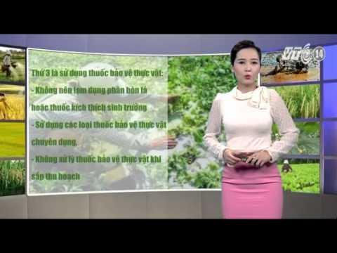 VTC14_Thời tiết Nông vụ ngày 14.02.2014