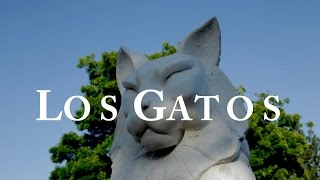 Los Gatos (CA) United States  City new picture :