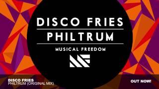 Thumbnail for Disco Fries — Philtrum