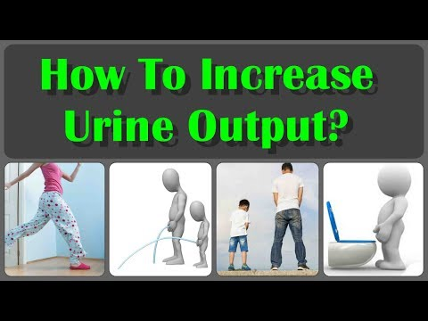 How To Increase Your Urine Output And How To Increase Urine Flow Naturally