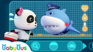 Video *NEW* Super Panda Rescues Police Shark | Super Rescue Team 8 | Baby Shark | Panda Cartoon | BabyBus MP3, 3GP, MP4, WEBM, AVI, FLV Juli 2019