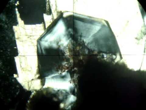 Analcima 4   Em Cristal Euédrico