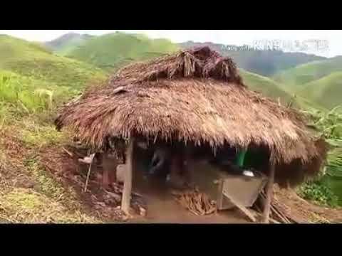 Hmoob yaj sab-Dej ntws taus ces dej ntws (видео)