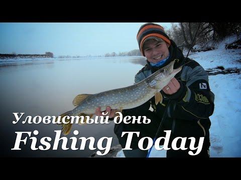 рыбалка на реке в праге