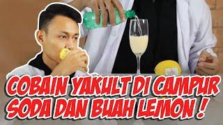 Download Video EXPERIMENT YAKULT CAMPUR SODA SUSU BUAH BUAHAN MP3 3GP MP4