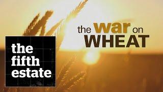 Video The War on Wheat - the fifth estate MP3, 3GP, MP4, WEBM, AVI, FLV November 2018
