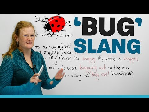 SLANG words Using 'bug' In English