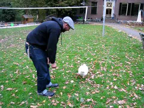 Gus feeds a Goose!