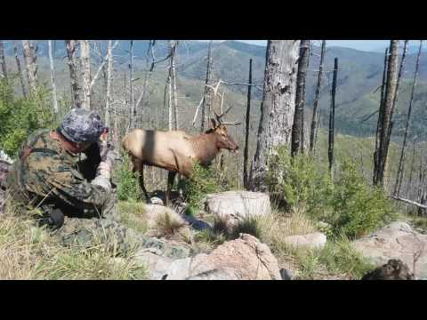 2016 ELK BOW HUNT NEW MEXICO