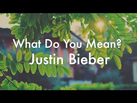 What Do You Mean? - Justin Bieber (lyrics)