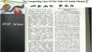 Amharic Bible - New Testament Bible In Amharic And English.avi