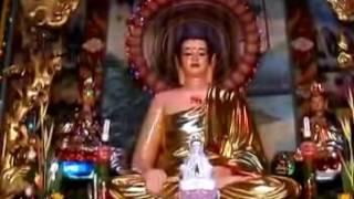 Kinh Phước Đức 6:  Con đường an vui (01/08/2008) - TT. Thích Nhật Từ