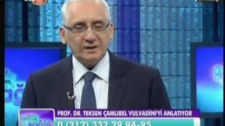OTA&Jinemed Hastanesi - Prof.Dr.Teksen Çamlıbel - Vulvadini hastalığı / Part 2