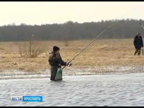 рыбалка в докторово